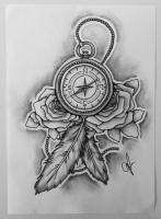 Kompas met veren